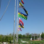 International flags; more like a park than rows of field flowers