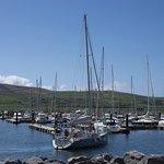 Dingle Marina照片