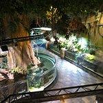صورة فوتوغرافية لـ دبي أكواريوم وحديقة الحيوانات