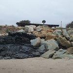 Foto de Carpinteria State Beach