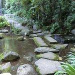 Ochanomizu Pond صورة فوتوغرافية