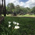Ecoparque Cuzamの写真
