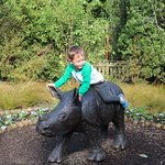 My grandson sitting on the Rhino