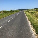 Zdjęcie Champagne Route (Route Touristique du Champagne)