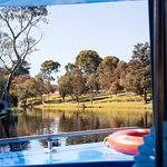 View from the boat facing upstream towards the Adelaide Zoo