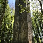 Tower in the woods (you can climb it, but not much of a view)