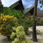 Bilde fra Adaaran Select Hudhuranfushi