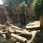Photo of Barcelona Zoo