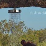 Douche chaude de la piscine nichée dans un arbre