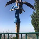 馬蘇里舞葉史德林渡假村照片
