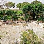 Φωτογραφία: Azienda Agricola Pupillo