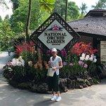 National Orchid Garden Φωτογραφία