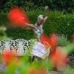 Shere Open Gardens