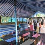 yoga retreat  January 2018