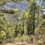 Foto van Caldera de Taburiente National Park