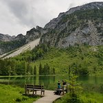 Bergwald-Erlebnispfad의 사진