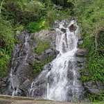 Eungella Range Waterfall (only in wet season)