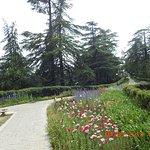 Gardens around the place