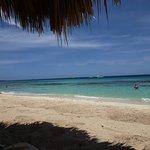 Photo de Isla Catalina