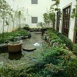 Small garden in between hotel buildings