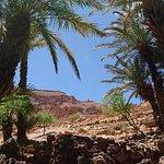 Photo of Morocco Unplugged DayTours