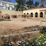 Foto de Jardim Zoologico