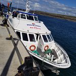 our ferry charter