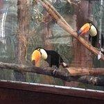 Foto de Zoo Cafe