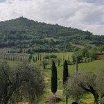 Foto van Azienda Agricola Capanna di Cencioni