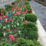 Bryant Park - May visit