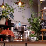 Full of plants, a cafe that's loved by those who work here!