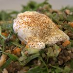 Perfectly poached egg with Puy lentils and salad, highly recommended.