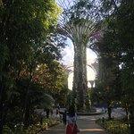Gardens by the Bay Resmi