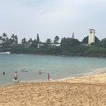 威美亚湾海滨公园照片