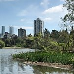 Photo of Stanley Park