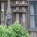 Standing Bear Farm / Hostel Εικόνα