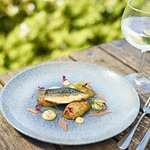 Pan fried fillet of mackerel, Jersey Royals, dill mayonnaise, pickled rhubarb