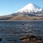 Volcán Parinacota & Lago Chungará