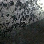 ภาพถ่ายของ Kilim Karst Geoforest Park