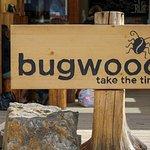 Bugwood