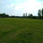 Canadian Fieldsの写真