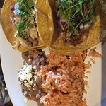 2 taco plate(chicken and carnitas)