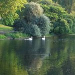 Φωτογραφία: St. James's Park