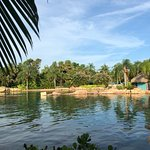 Discovery Cove Foto