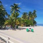 Plantation Island Resort Resmi