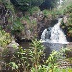 Waterfall at Bottom of Canyon Trail