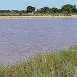 l'eau rosée des salins