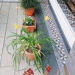 Parakkat Nature Hotels & Resorts照片