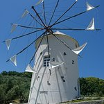 Zdjęcie Michi-no-Eki Shodoshima Olive Park