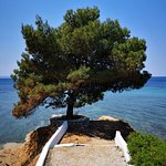the perfect place in Halkidiki